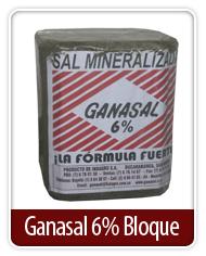 Ganasal 6% Bloque